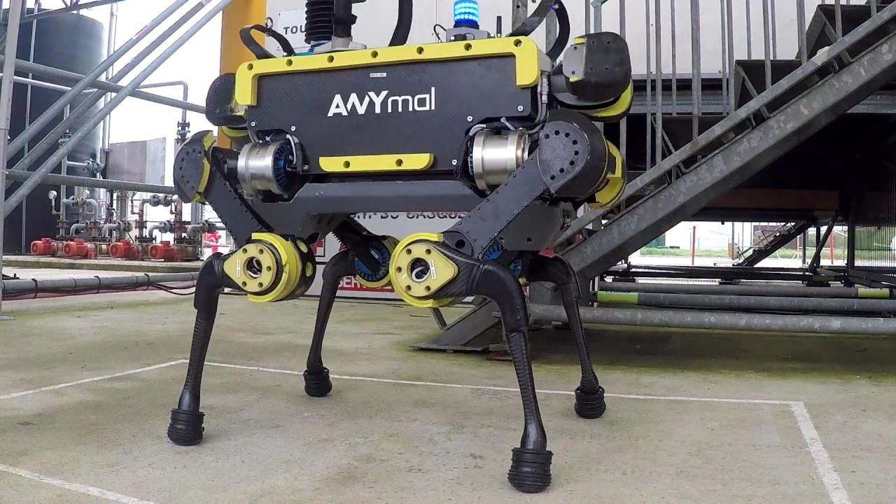 Novinky zo sveta robotiky #33