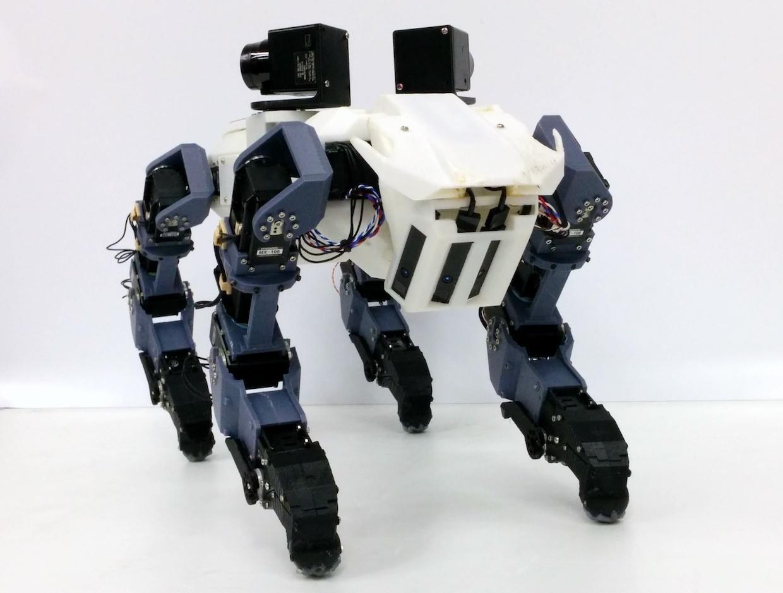 Zdolávanie rebríka v robotickom štýle