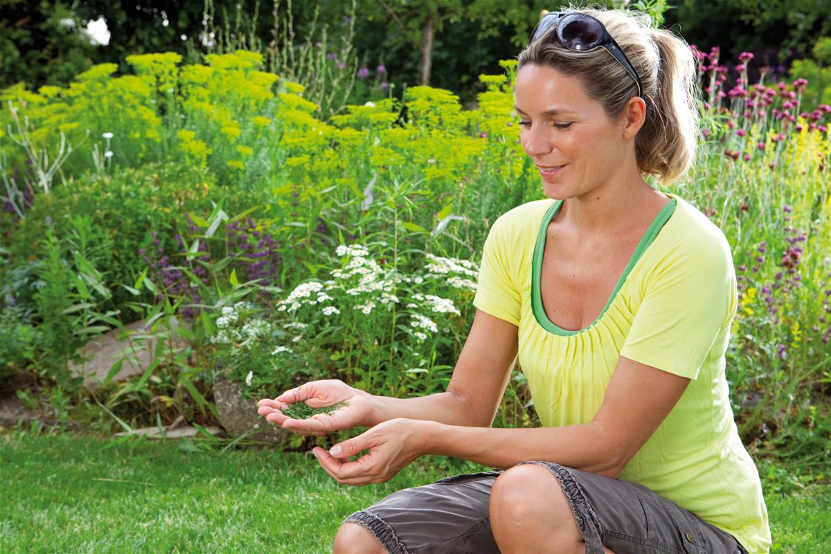 Skvelé výsledky kosenia - nie je potrebné odstraňovať posekanú trávu